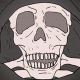 Skull illustration Stock Photo