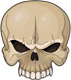 Skull. Illustration of a scary skull Royalty Free Stock Images