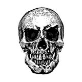 Skull image in grunge. Vector art. Street style. Symbol of death. Monochrome style. Isolated on white background Stock Photo