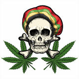 Skull In Rastaman Hat Stock Image