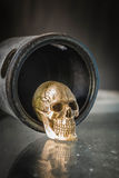 The skull inside the door. Royalty Free Stock Photos