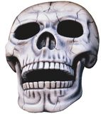 Skull - isolated. A human skull isolated Royalty Free Stock Image