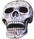 Skull - isolated royalty free illustration