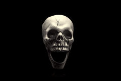 The Skull. A isolated skull on black background Royalty Free Stock Image