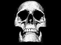 Skull isolated in black background 3d illustration stock illustration