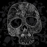 Skull lace Stock Image