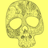Skull lace Stock Images