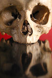 SKULL landscape in red Stock Images
