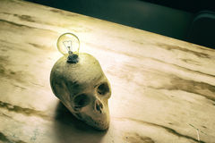 Skull with lightbulb Royalty Free Stock Image