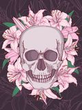Skull and lilies  illustration Stock Photography