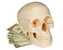 Skull lying on a pack of money isolated on white Royalty Free Stock Image