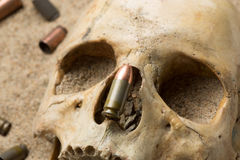 Skull lying in the sand, scattered rifle  Stock Photos