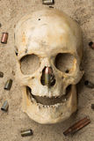 Skull lying in the sand, scattered rifle Royalty Free Stock Photos