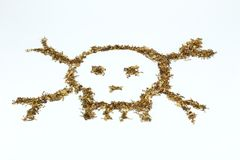 Skull made of tobacco and cigaratte Royalty Free Stock Photos