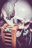 Skull with miniature figurine of people Royalty Free Stock Images