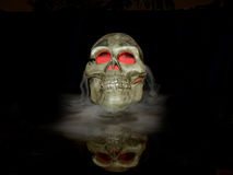 Skull In The Mist Stock Images