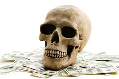Skull with money Stock Images