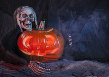 Skull monster and halloween pumpkin Stock Images