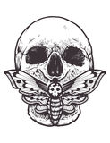 Skull with Moth Vector Stock Photography