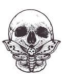 Skull with Moth Vector vector illustration