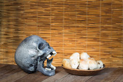 Skull and Mould on food. Bread with mildew. Rotten food, bread, Royalty Free Stock Image