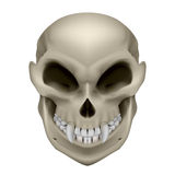 Skull of a mutant Stock Images
