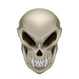 Skull of a mutant Stock Photos