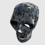 Skull. Nice new picture of an blender  3d model Stock Image