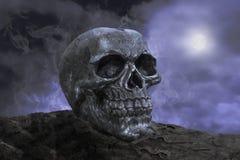 Skull in the night Stock Image