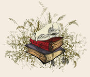 Skull in the occult books, surrounded by a grass. Stock Photo