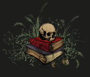 Skull in the occult books, surrounded by a grass. Stock Images