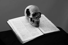 Skull on the old book Stock Photos