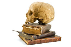Skull and old books royalty free stock photo