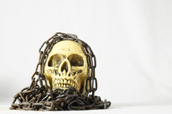 Skull and old Chains Royalty Free Stock Photo