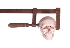 Skull in old clamp royalty free stock photo