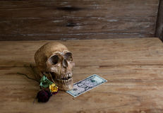Skull on old wooden floor with a dollar. Royalty Free Stock Photos
