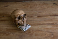 Skull on old wooden floor with a dollar. Royalty Free Stock Photography