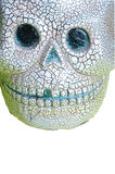 Skull onwhite. Scary halloween skull on white Royalty Free Stock Image