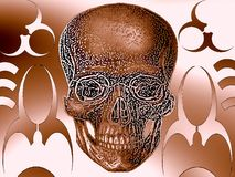 Skull ornament illustration Stock Photography