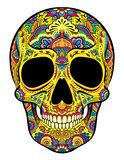 Skull with ornaments Royalty Free Stock Photo