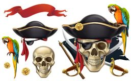 Skull and parrot. Pirate emblem. vector icon set Royalty Free Stock Images