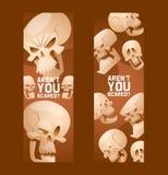 Skull pattern vector dead head crossbones human tattoo illustration thick-skulled set of horror symbol of death evil on. Halloween background wallpaper banner royalty free illustration