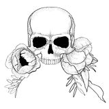 Skull with peony flowers boho graphic vector. Illustration Stock Photography