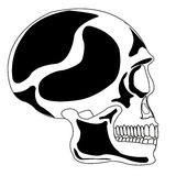 Skull of the person Stock Photography