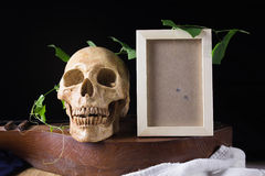 Skull and photo frame with green leaf on old wood musical instru Stock Photo