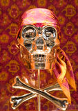 Skull - pirate Royalty Free Stock Images