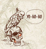 Skull and pirate parrot. Hand drawn skull and pirate parrot. Vintage vector background Royalty Free Stock Photos