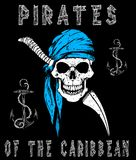 Skull Pirates Graphic Design Stock Photography