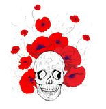 Skull and poppies Stock Photos