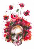 Skull and poppies Royalty Free Stock Photography